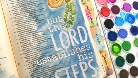 Bailey Jean Robert | Proverbs 19:21
