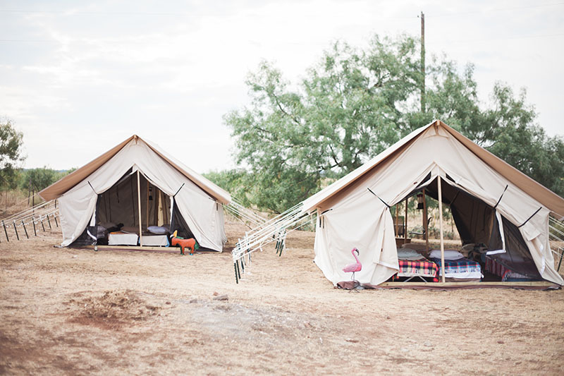 BethCupitt_camp