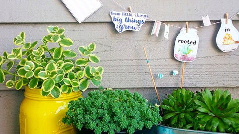 Artist Project: Mini Succulent Garland with Jaime