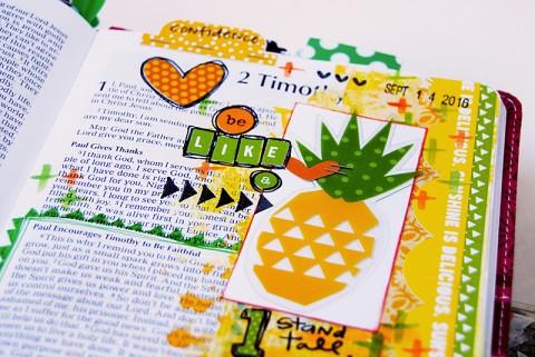 Comparing Pineapples & Oranges