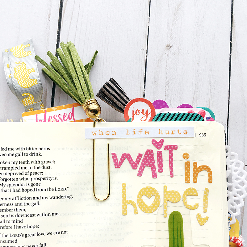 Worth the Wait Bible Journaling entry by Bailey Jean Robert | Wait with Hope | cactus, hexies, homespun alpha, transparency