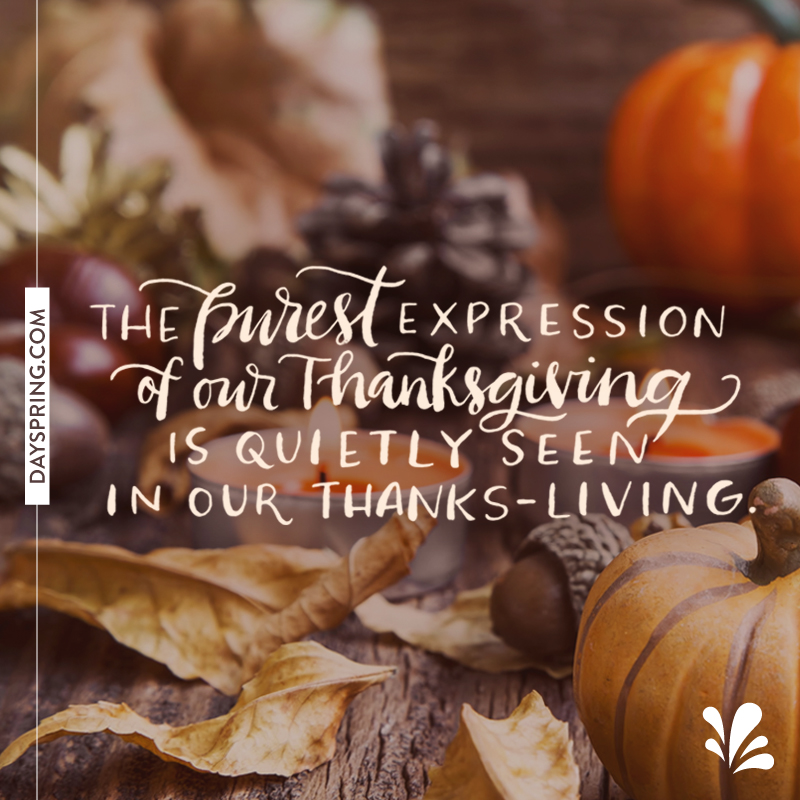 Happy Thanksgiving from Illustrated Faith and DaySpring