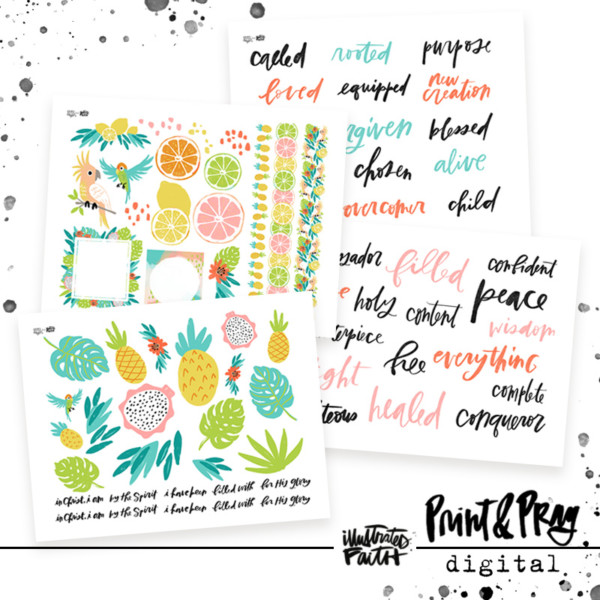 Illustrated Faith In Christ Elements